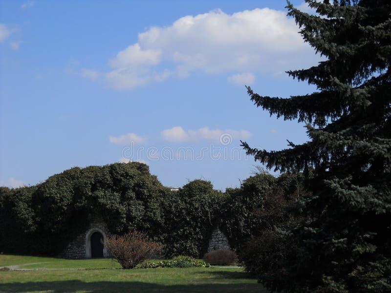 波兰克拉科夫公园 图库摄影