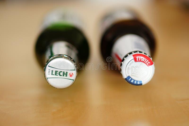 波兰啤酒 库存照片