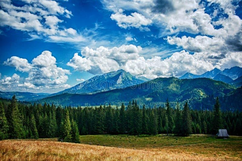 波兰山 库存照片