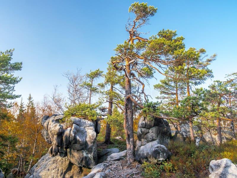 波兰桌山国家公园独特岩层 免版税图库摄影