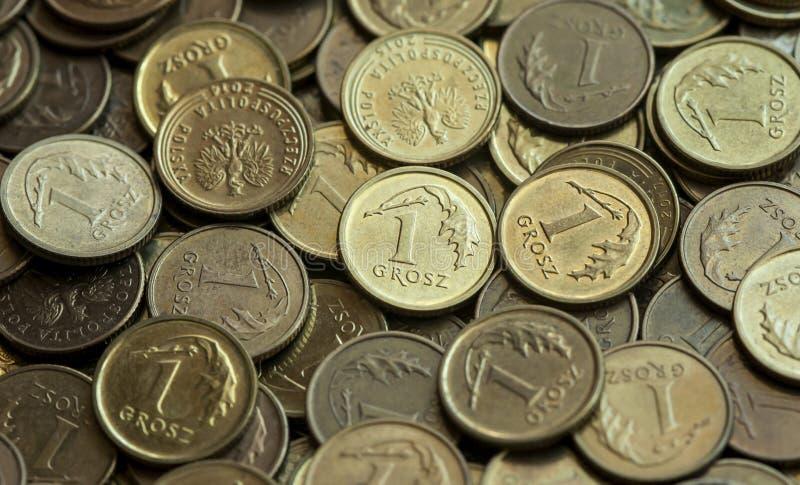 波兰钱币一 免版税库存图片