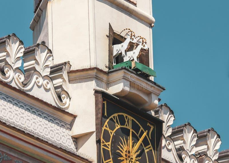 波兹南,波兰-在波兹南城镇厅的钟楼的传统战斗的山羊 免版税图库摄影