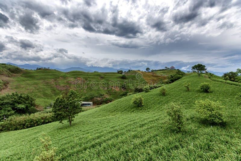 波动的上升的和下跌的风景乡下风景  库存图片