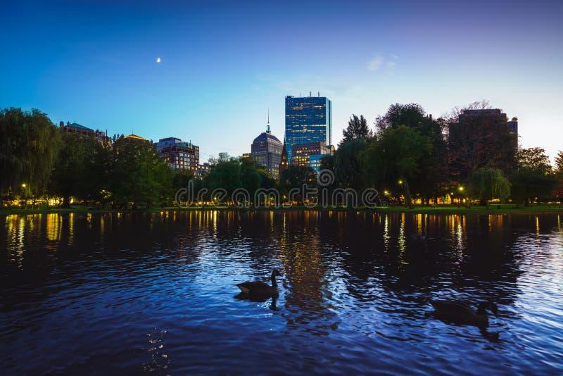 波士顿公园的池塘 免版税库存图片