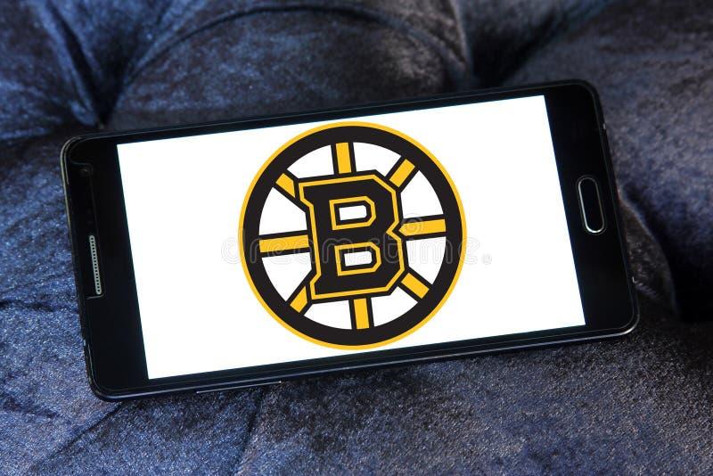 波士顿熊冰球队商标 免版税库存照片