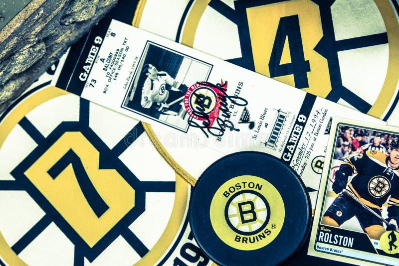 波士顿熊拼贴画 免版税库存图片