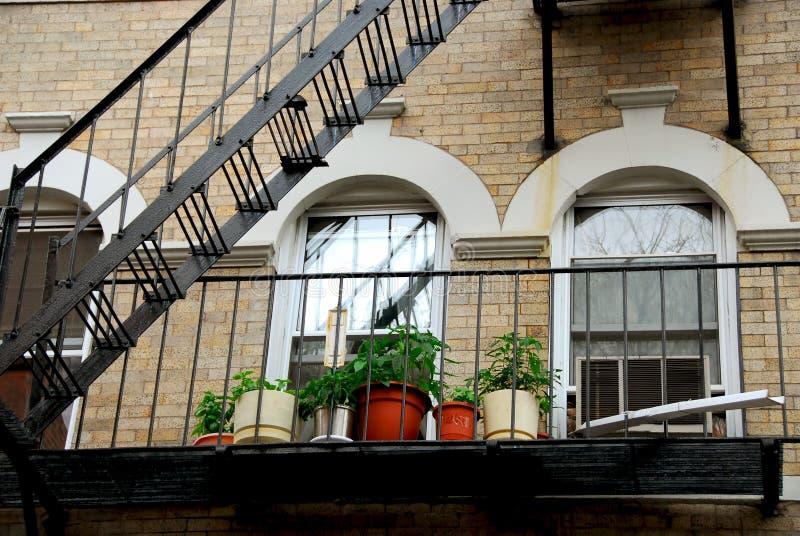 波士顿片段房子 免版税库存照片