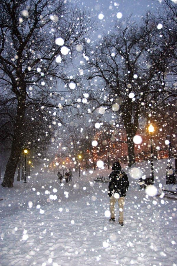 波士顿雪风暴 图库摄影