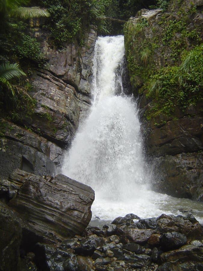 波多里哥瀑布 免版税库存照片