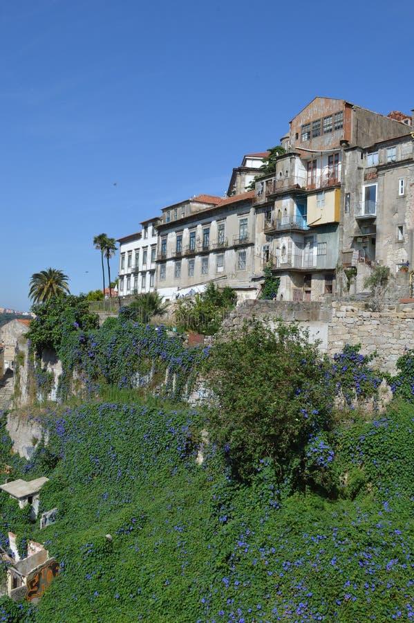 波尔图市,葡萄牙,欧洲 免版税库存照片