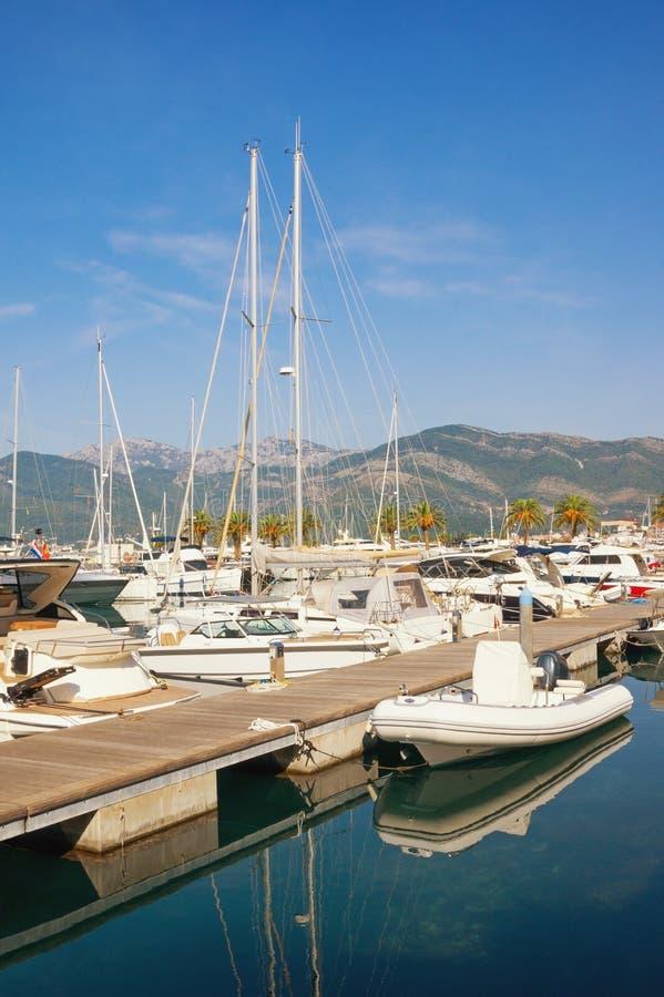 波尔图黑山游艇小游艇船坞看法在晴朗的秋天天 黑山,蒂瓦特市 免版税图库摄影
