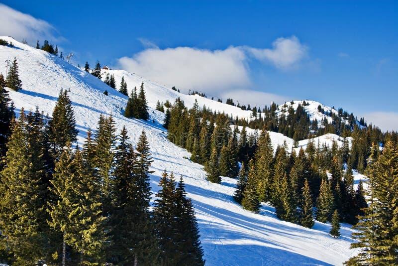 波斯尼亚中心hercegovina jahorina滑雪 免版税库存照片