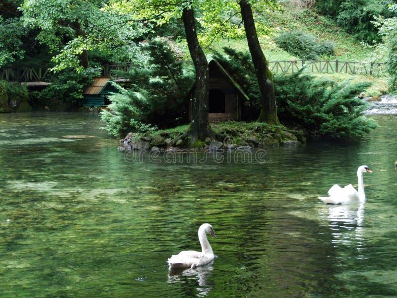 波斯尼亚河河的公园和来源 免版税库存图片