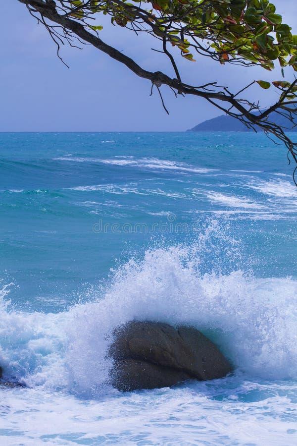 波浪和海 免版税库存照片