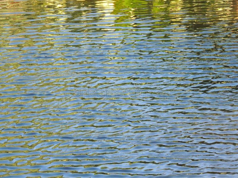 波纹在水中 免版税图库摄影