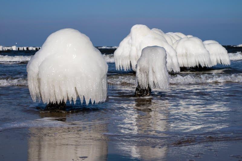 波罗的海在波兰 海岸和falachron与冰冷的木pe 免版税库存图片