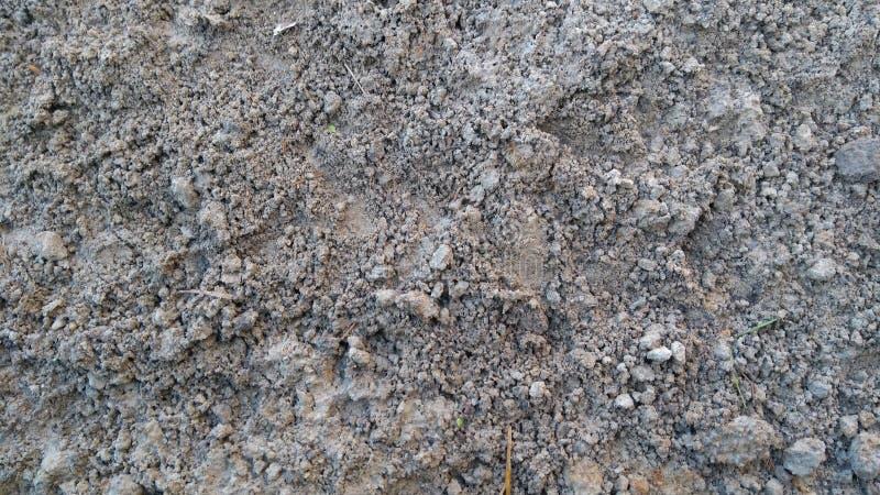 泥地面冬天 图库摄影