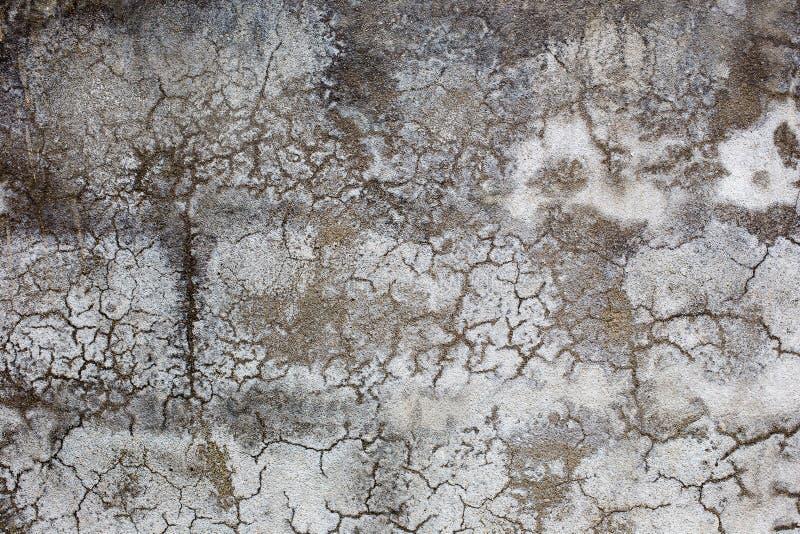 水泥构造白色墙壁纹理难看的东西背景 免版税库存照片
