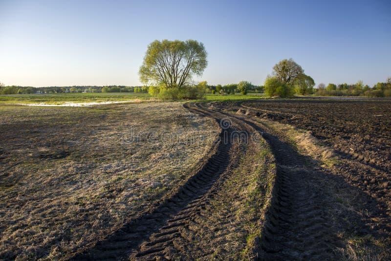 泥泞的路通过领域和拖拉机轨道 免版税库存图片