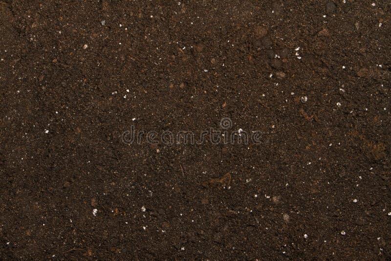 泥煤土壤 库存图片