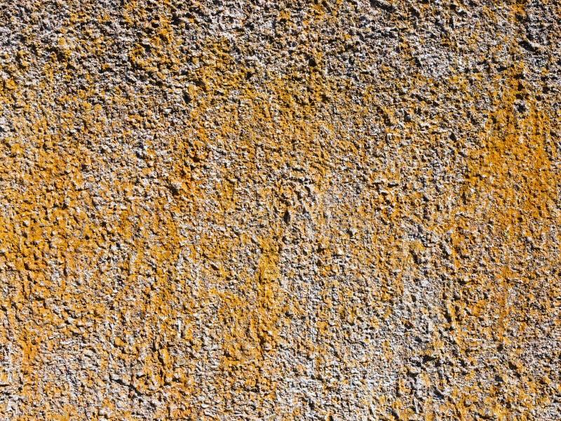 水泥膏药纹理背景的 免版税库存照片