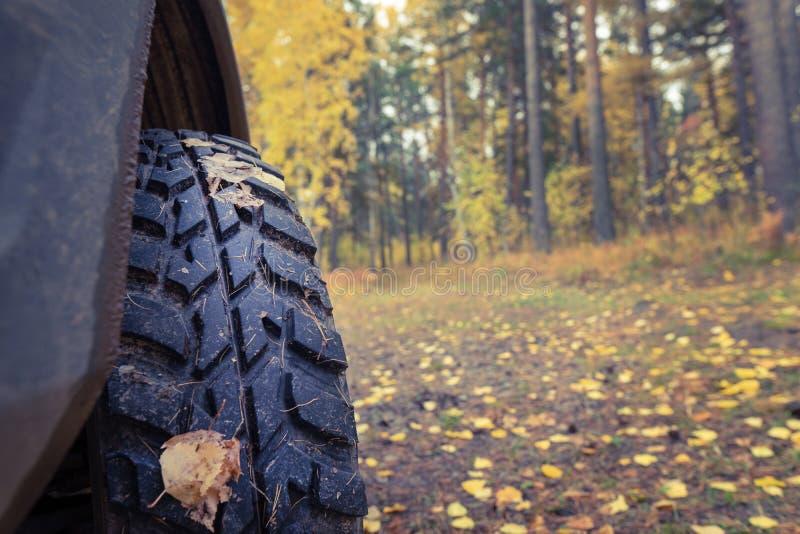 泥轮胎,秋天背景,旅行 o 库存照片