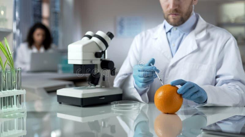 注射桔子以特别物质的科学家检查相当数量化学制品 免版税图库摄影