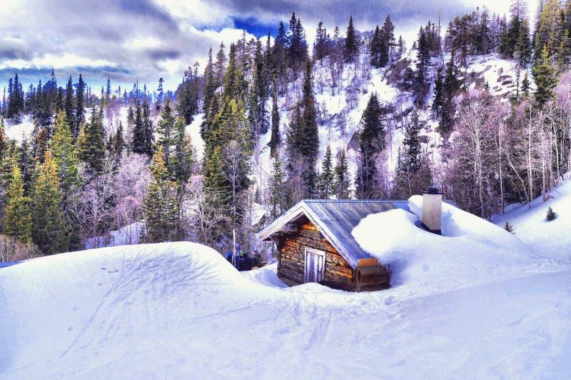 泰勒马克郡,挪威在冬天 免版税图库摄影