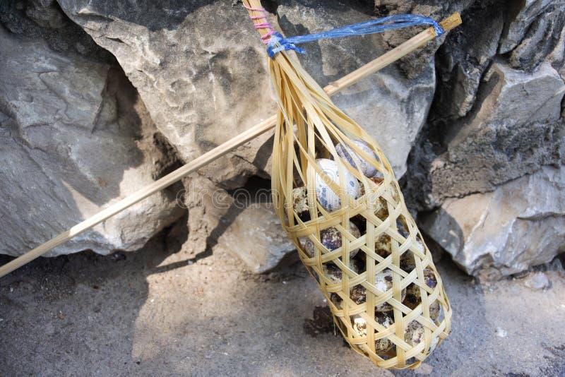 泰国人和旅客外国人在Pa Tueng温泉的烹调煮沸的鹌鹑蛋在Mae陈在清莱,泰国 库存照片