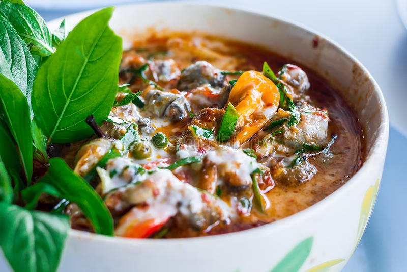 泰国咖喱-储蓄图象 免版税库存图片
