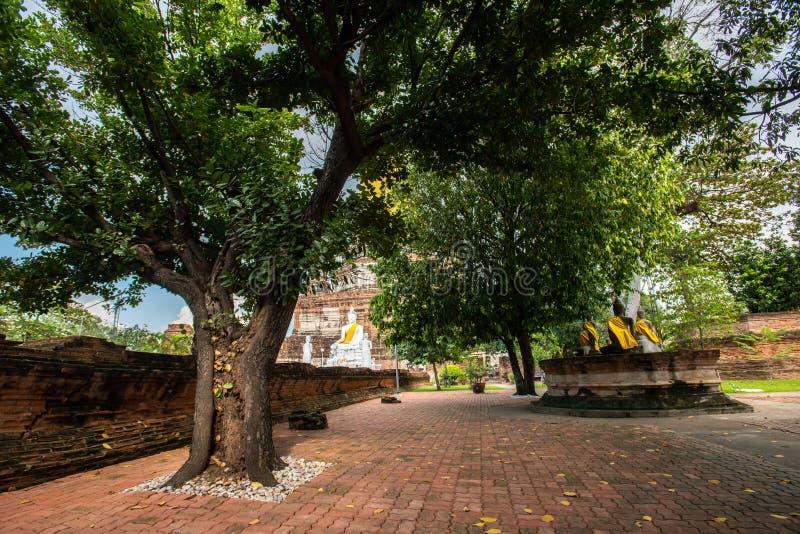 泰国大城历史公园Wat Yai Chai Mongkhon古塔 库存照片
