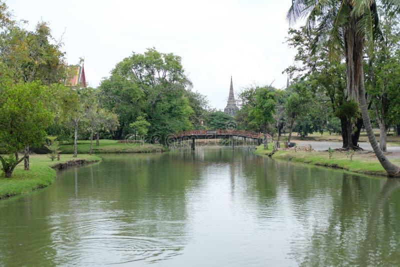 泰国大城市 — 2018年10月20日:古塔背景下的大城历史公园沼泽 联合国教科文组织的世界 免版税库存照片