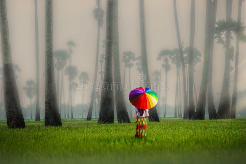 泰国巴吞他尼雾气弥漫的田地和棕榈树中间的亚洲妇女 图库摄影