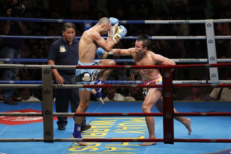 泰国拳击或泰拳 图库摄影