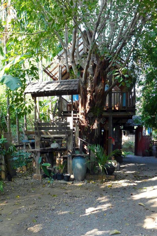 泰国柚木树房子和庭院化合物 免版税图库摄影