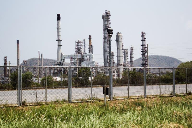 泰国油 库存照片