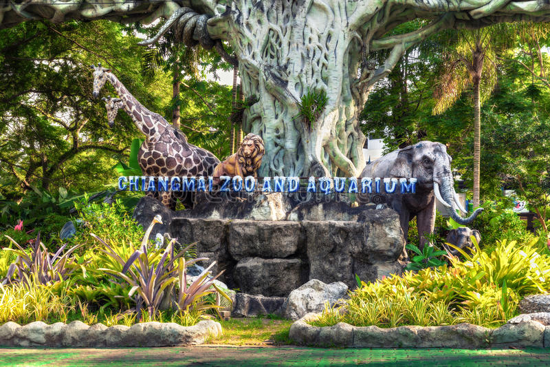 泰国清迈动物园&水族馆 免版税图库摄影