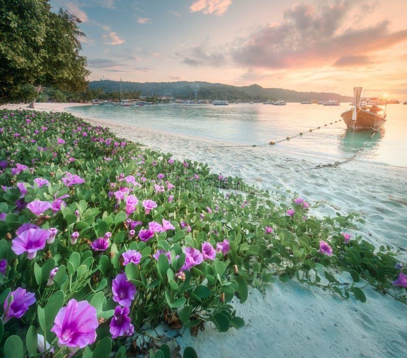 泰国的热带手段、棕榈和海岸靠岸 免版税库存图片