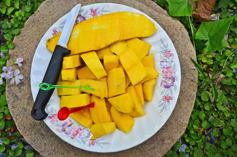 泰国的美味的著名果子是芒果盘 免版税库存照片