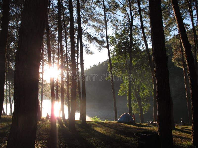 泰国的自然风景野营的 免版税库存照片