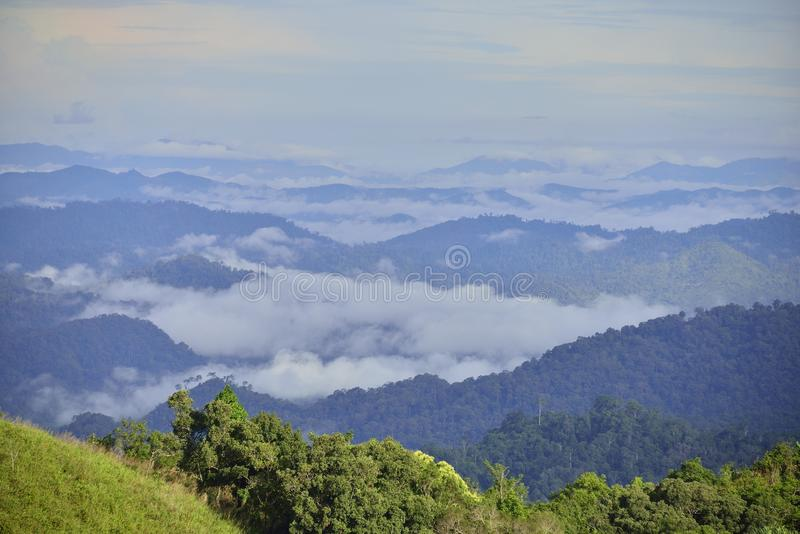 泰国的西部的森林 库存照片