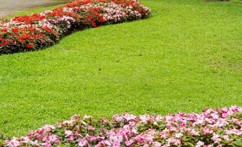 泰国的酷寒北风的美丽的庭院 库存照片