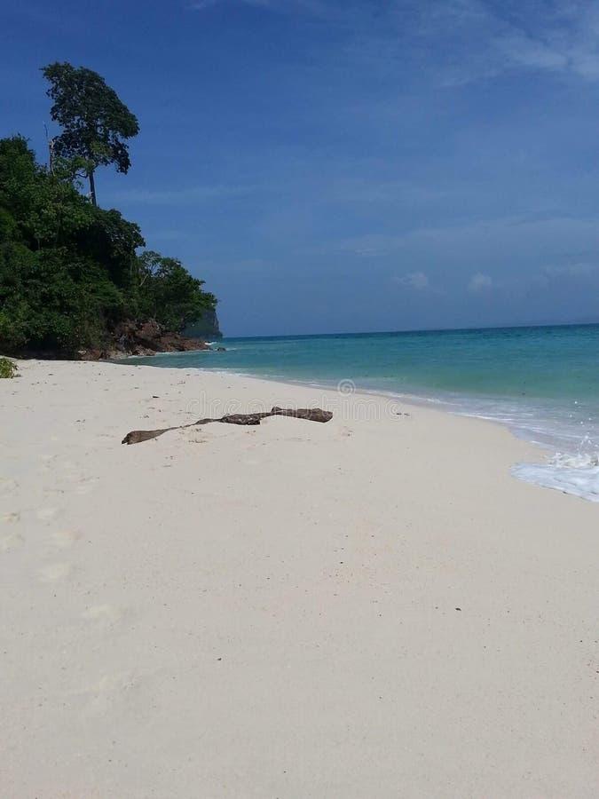 泰国的Krabi 免版税库存照片