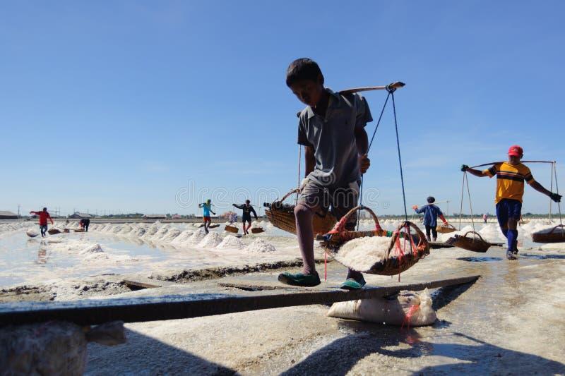 泰国盐农厂工人 免版税库存图片