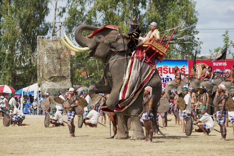 泰国素林的野象展上,马胡斯和演员参加了阅兵 免版税图库摄影