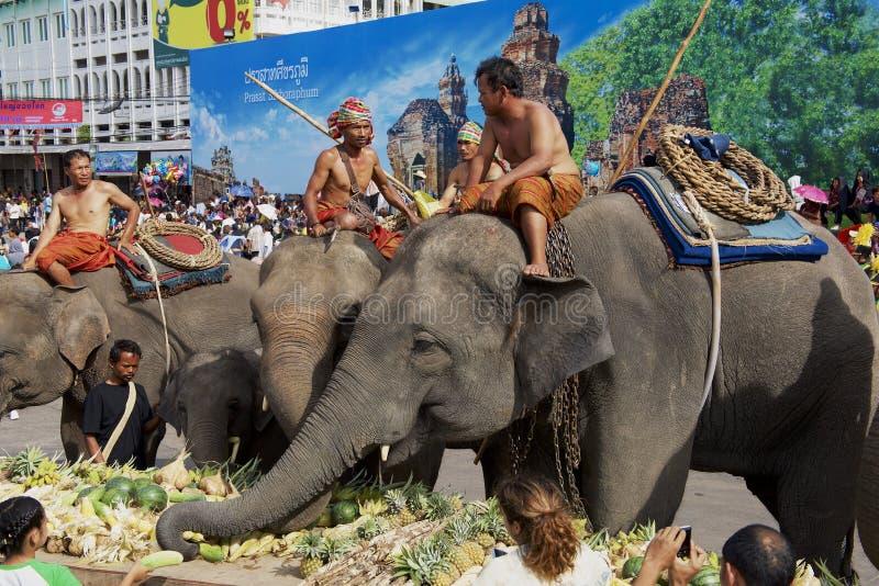 泰国苏林大象自助餐中的大象 免版税库存照片