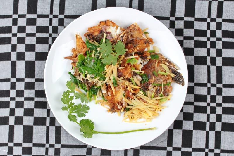 泰国食物、油煎的姜与罗非鱼鱼& x28; 在Thai& x29叫Pla零垫Khing; 库存照片
