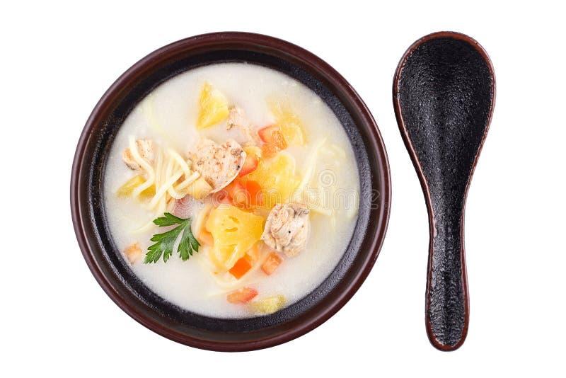 泰国食物大角度看法-鸡和面条在白色隔绝的椰奶汤 可口汤用肉和面条 库存图片