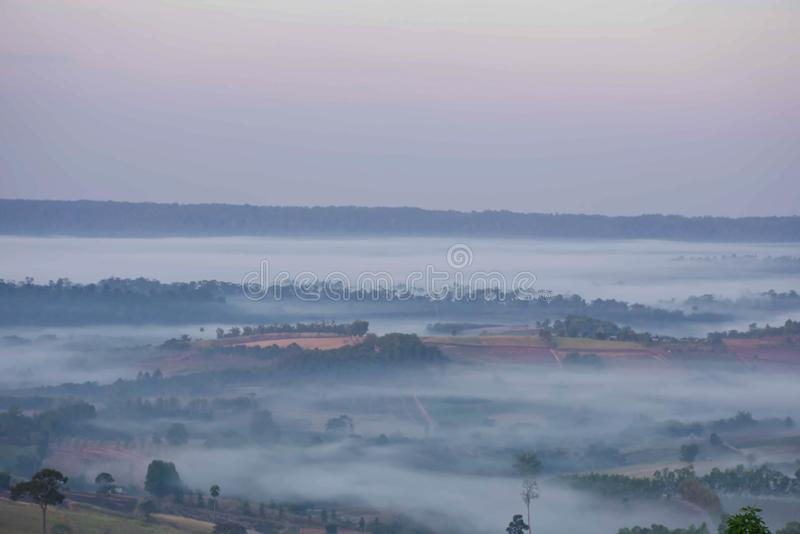 泰国Khao Takhian Ngo Phetchabun树林覆盖的晨雾 库存照片