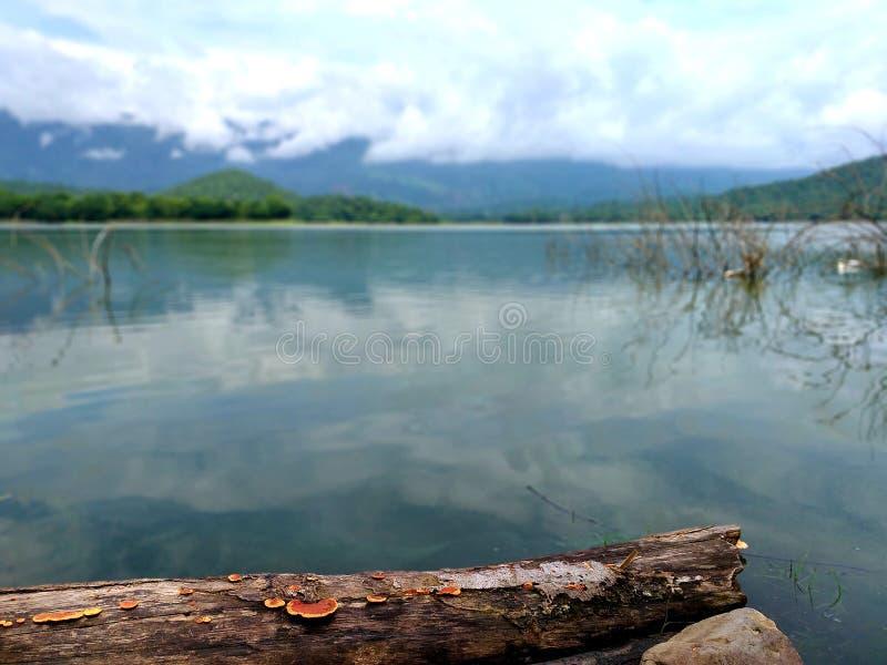 泰国Phetchabun的Pha Dang大坝 库存图片